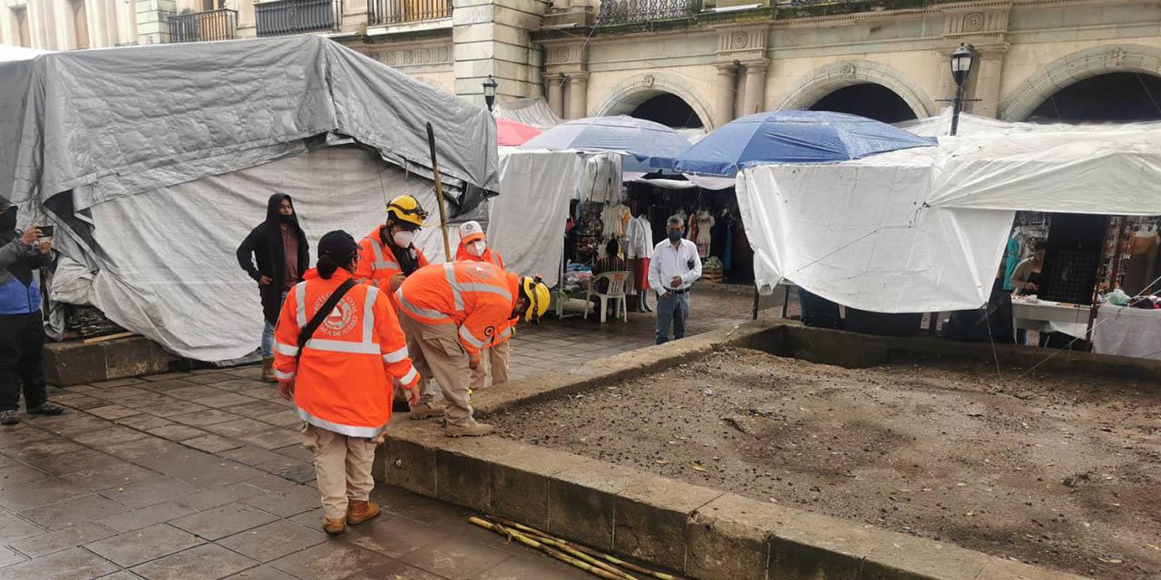 Acordonan arbolado del zócalo para evitar accidentes   El Imparcial de Oaxaca