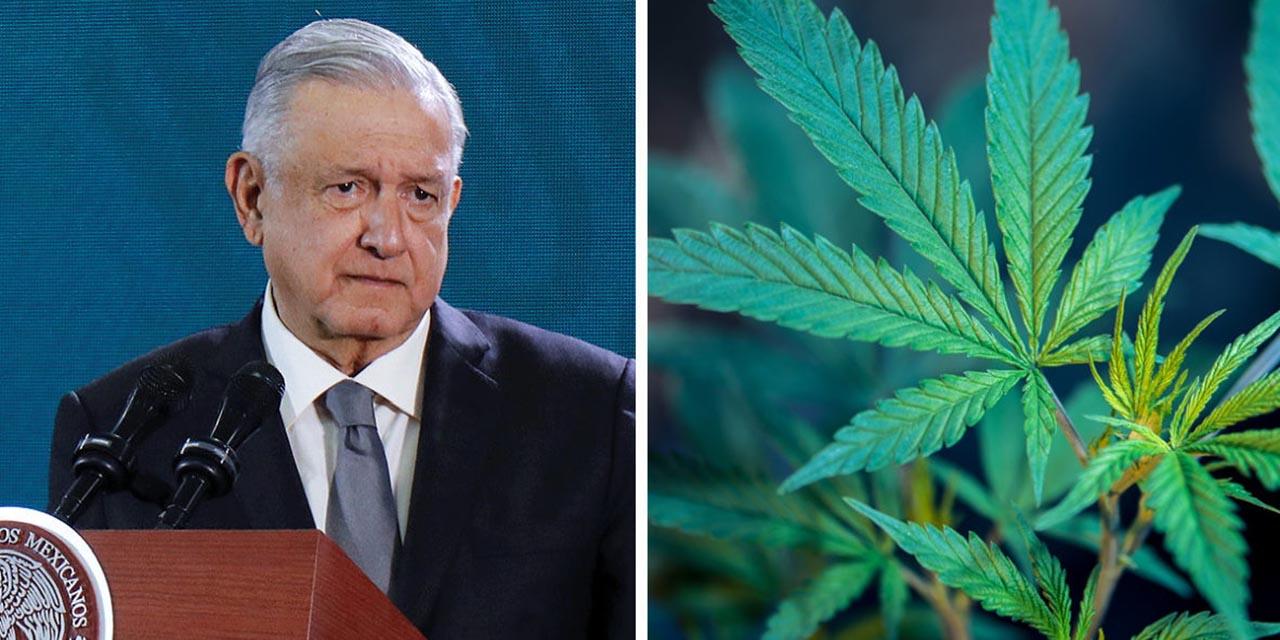 Observarán el impacto de legalizar la mariguana en México   El Imparcial de Oaxaca