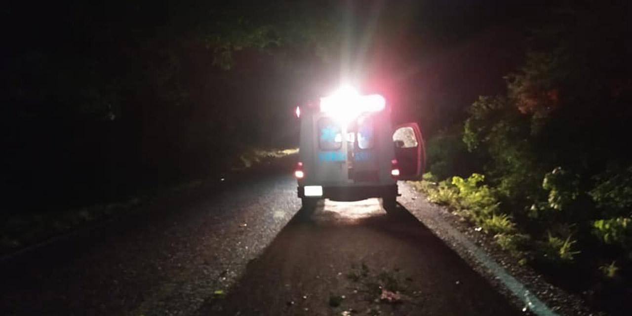 Motociclista derrapa por árbol caído en el asfalto   El Imparcial de Oaxaca