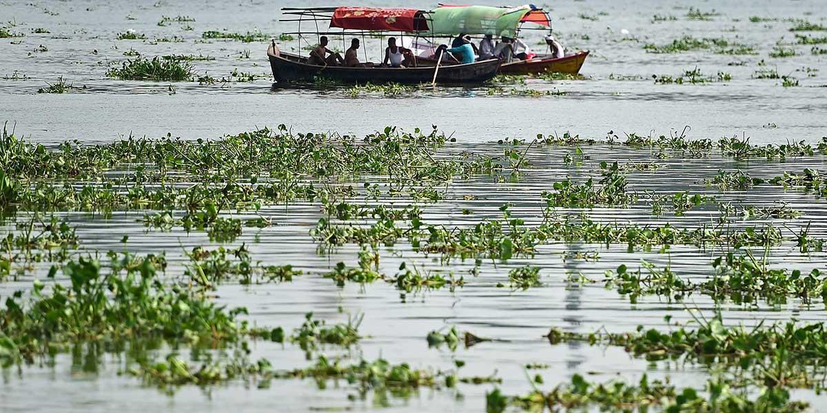 Ganga… la bebé milagro que fue hallada flotando en una caja en el río Ganges | El Imparcial de Oaxaca