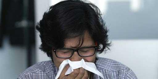 Según estudio: uno de cada 5 mexicanos sufre de rinitis alérgica   El Imparcial de Oaxaca
