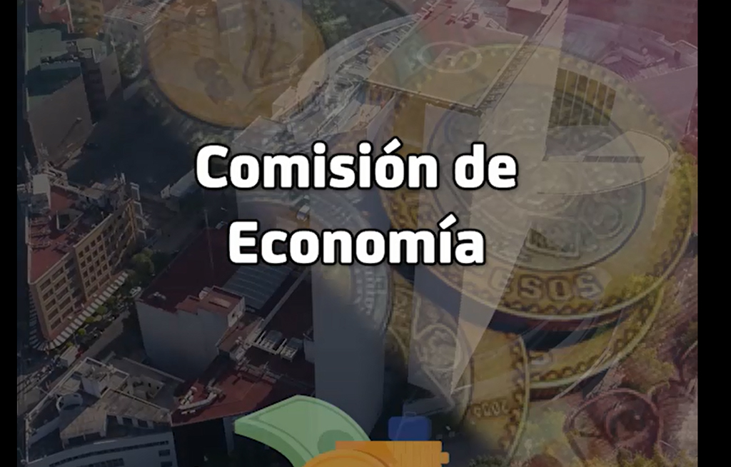 Sabías qué hace la Comisión de Economía del Senado de la República | El Imparcial de Oaxaca