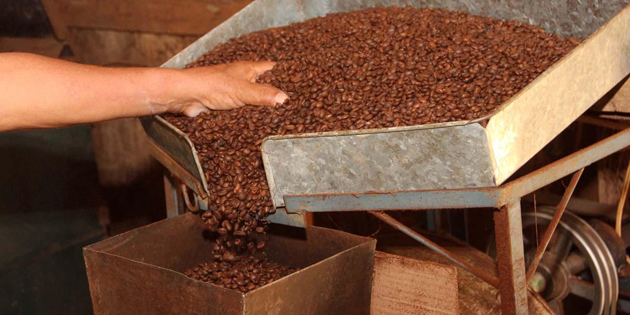 Exportaciones dejan 86.6 mdp a la entidad | El Imparcial de Oaxaca