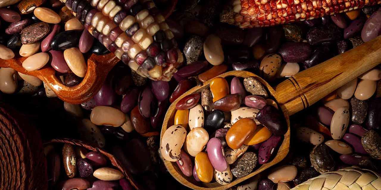 Baja producción de alimentos básicos por pandemia de Covid-19   El Imparcial de Oaxaca