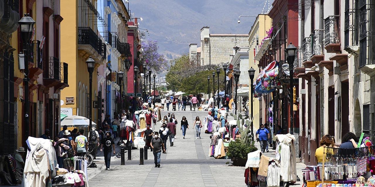 IP, generadora de empleo pero desdeñada por AMLO   El Imparcial de Oaxaca