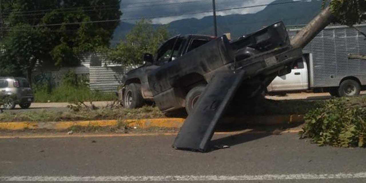 Camioneta derriba un árbol en la 190 | El Imparcial de Oaxaca