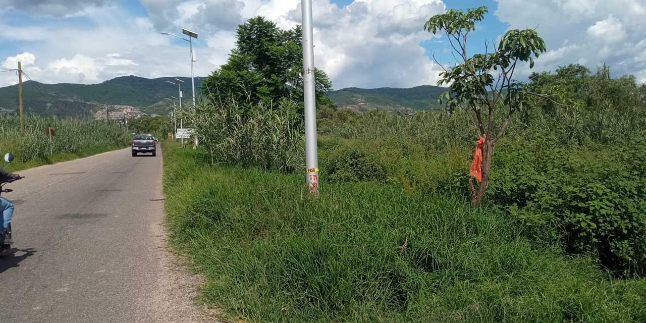 Hallan a mujer muerta en libramiento a la Exgarita   El Imparcial de Oaxaca
