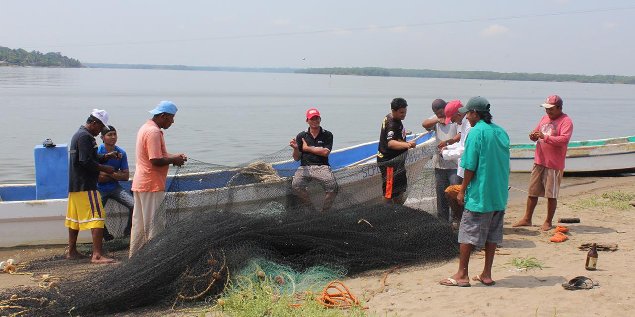 Oaxaca, el tercer mejor productor de agro y pesca | El Imparcial de Oaxaca
