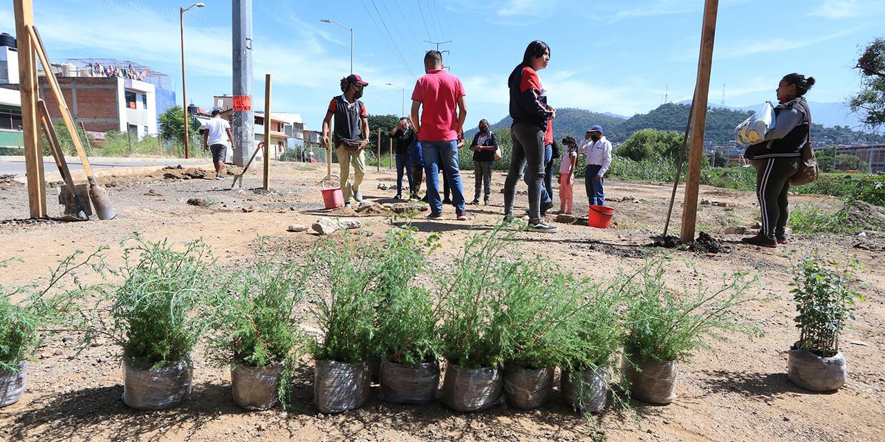 Vecinos de Las Campanas buscan recuperar riberas   El Imparcial de Oaxaca