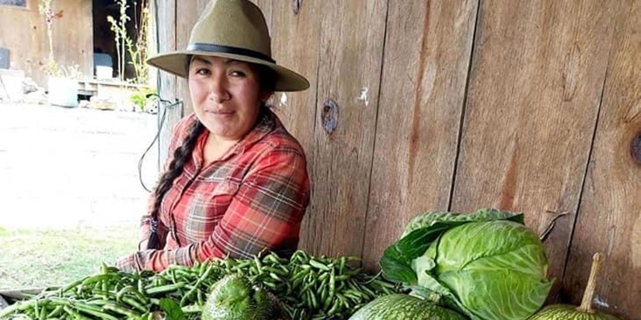 Festejan 5 años del mercado en Ojo de Agua | El Imparcial de Oaxaca