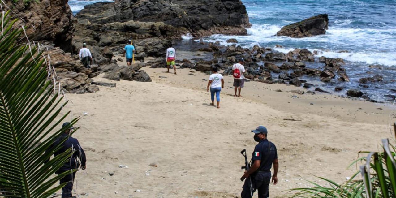 Avistan cocodrilo en playa de Tonameca   El Imparcial de Oaxaca
