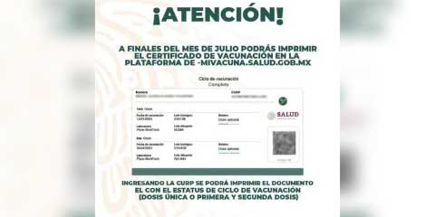 Aquí te decimos como tramitar tu certificado de vacunación Covid-19 | El Imparcial de Oaxaca