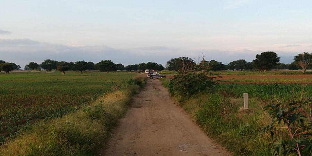 Localizan cuerpo sin vida en terrenos de Cuilapam, al parecer es de una mujer   El Imparcial de Oaxaca