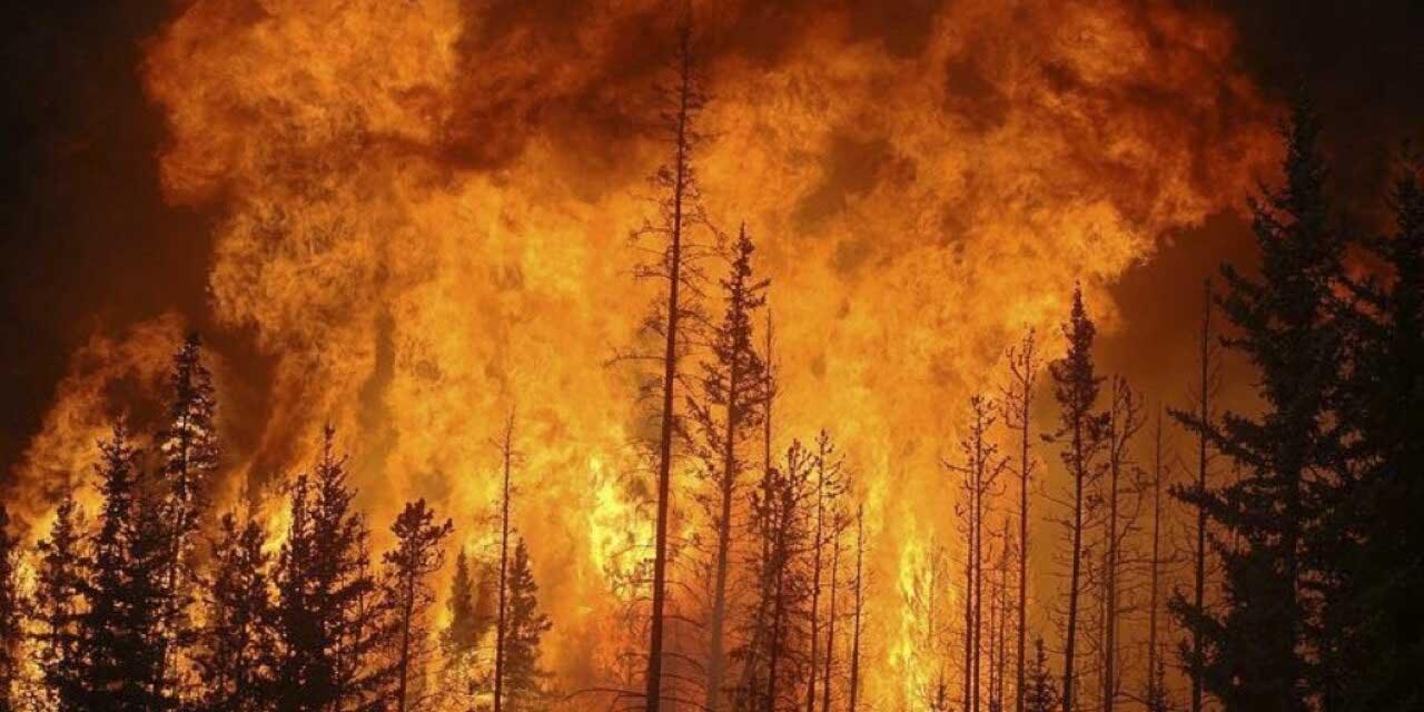 Incendios consumen la parte oeste de Canadá y California; miles de personas son evacuadas   El Imparcial de Oaxaca