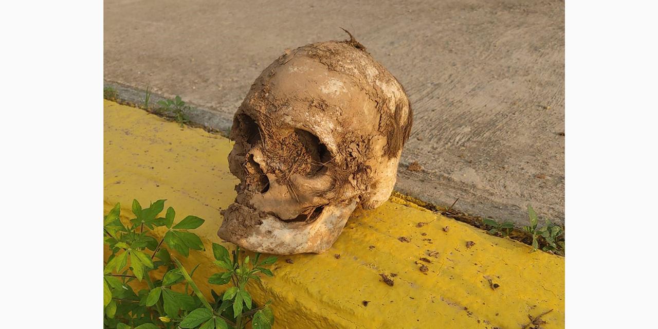 Hallan cráneo en Santo Domingo Tehuantepec | El Imparcial de Oaxaca