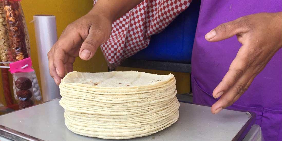 El precio del kilo de tortillas alcanza un máximo de $21.78   El Imparcial de Oaxaca