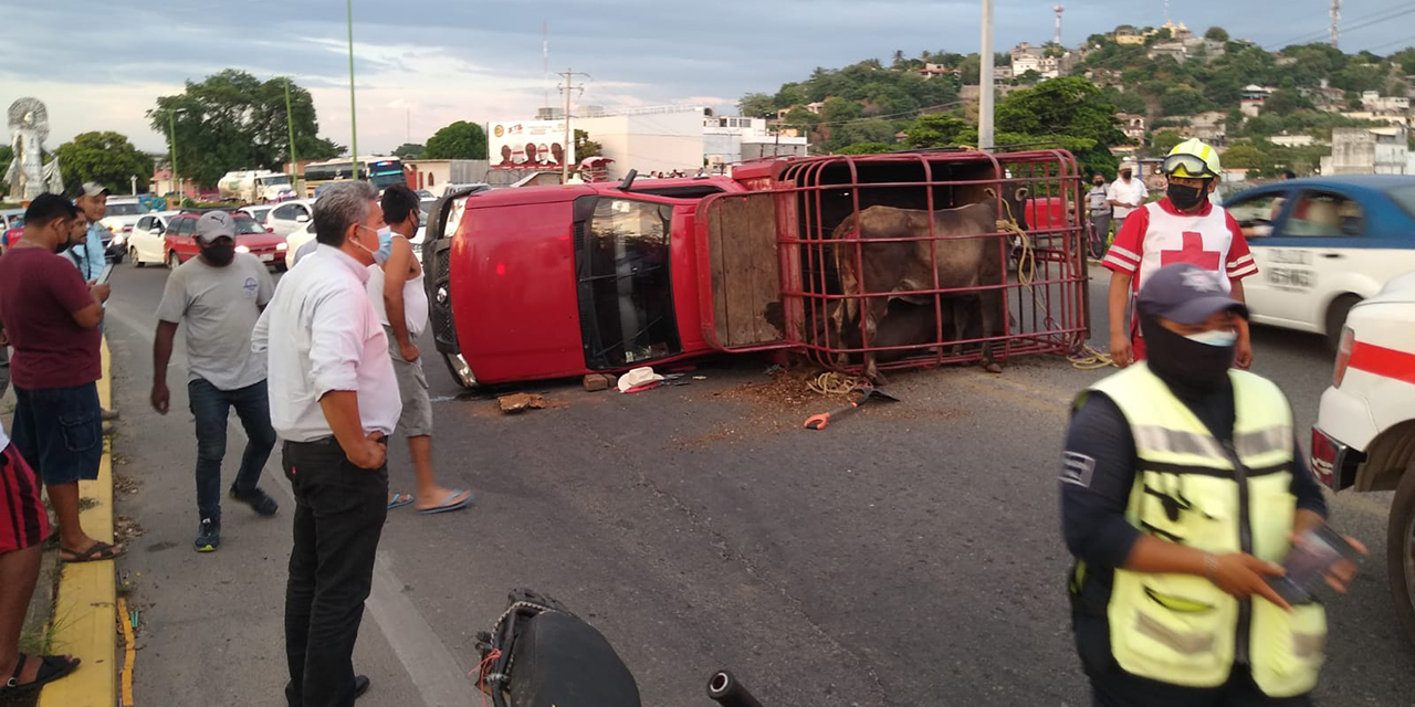 Vuelca camioneta ganadera sobre la carretera transístmica | El Imparcial de Oaxaca