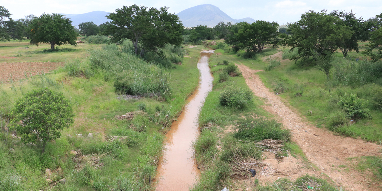Alivian lluvias intensa sequía; afecta a apenas 6% de Oaxaca   El Imparcial de Oaxaca