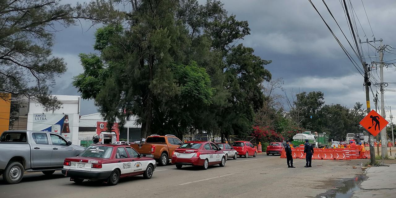 Ayuntamiento de Oaxaca avaló derribo de árboles | El Imparcial de Oaxaca