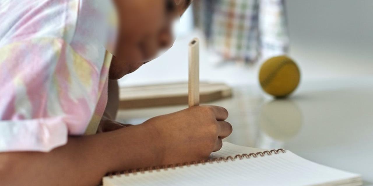 Zona escolar 055 apuesta por clases virtuales   El Imparcial de Oaxaca