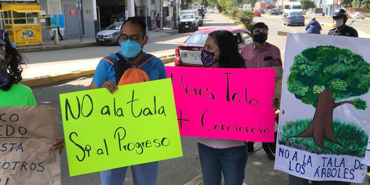 Marchan en contra de la tala de árboles en Símbolos Patrios | El Imparcial de Oaxaca