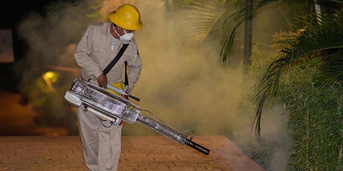 Ciudad de Oaxaca y Tuxtepec con un alto riesgo por contagio de dengue | El Imparcial de Oaxaca