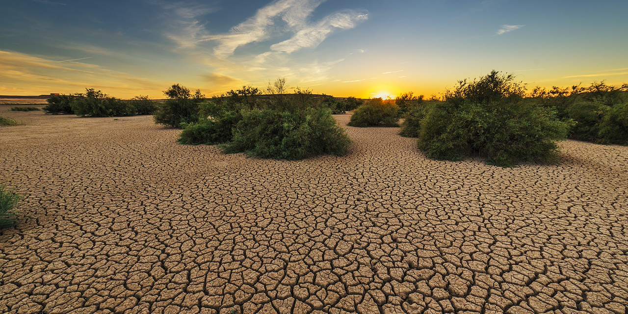 Se reduce la sequía da la superficie del territorio nacional en un 33.06% | El Imparcial de Oaxaca