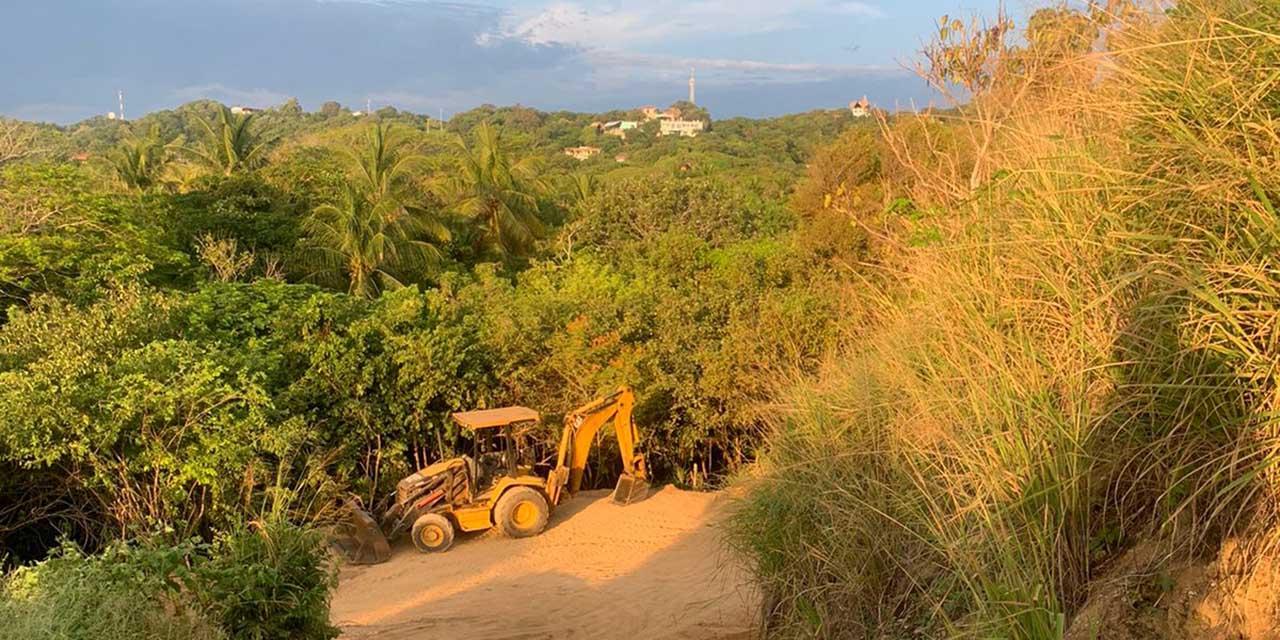 Denuncian ecocidio en  zona de reserva de Zipolite   El Imparcial de Oaxaca