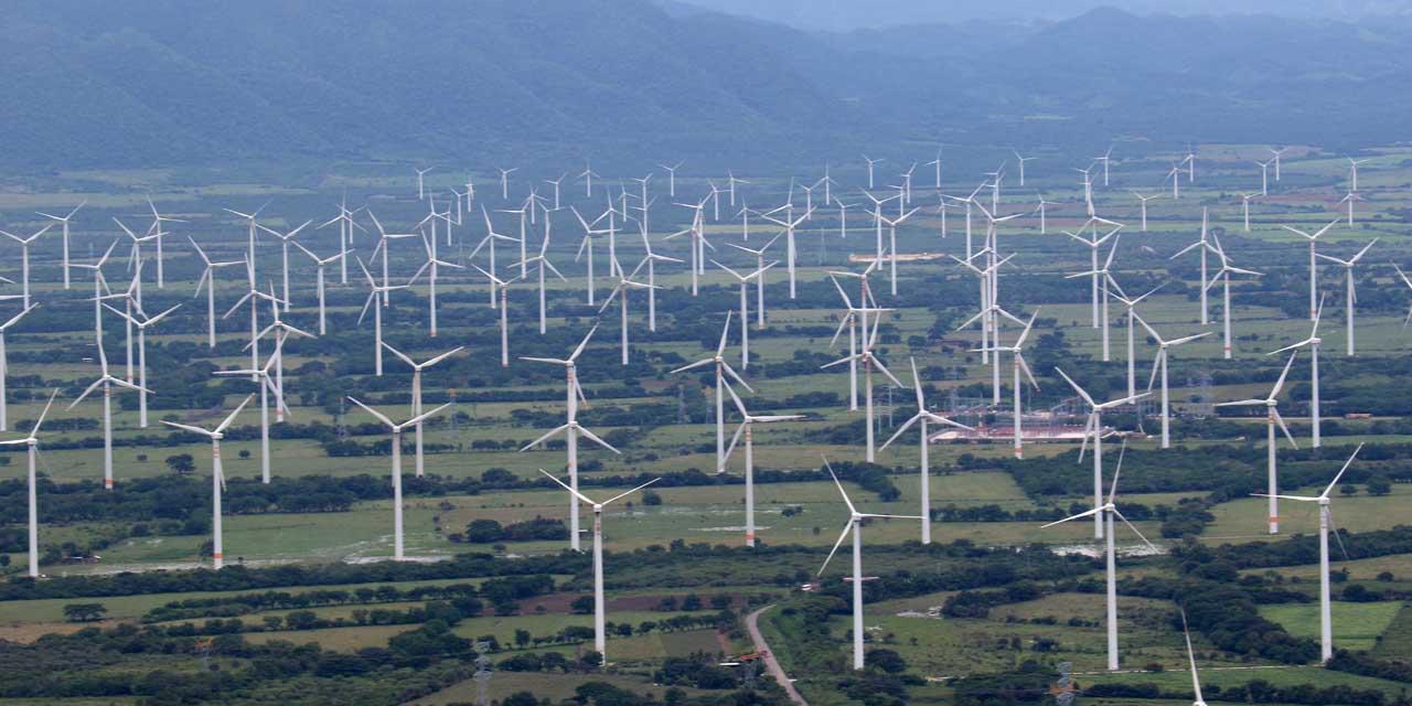 Otorga juez federal una nueva suspensión contra parque eólico | El Imparcial de Oaxaca