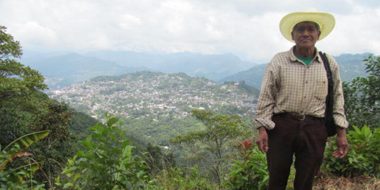 Adultos mayores mazatecos, frustrados ante Bienestar por analfabetismo   El Imparcial de Oaxaca