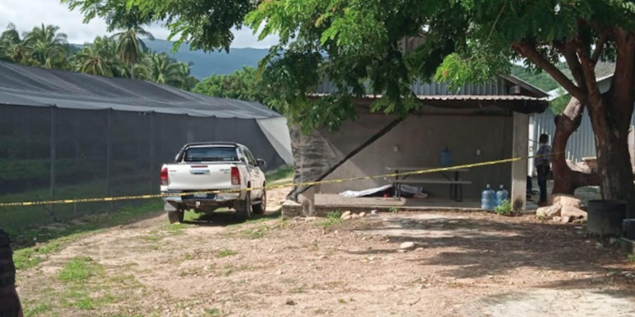 Ejecutan a un productor de cítricos en Tututepec | El Imparcial de Oaxaca