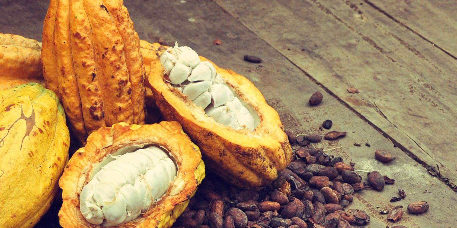 Bebidas mexicanas  ideales para la piel | El Imparcial de Oaxaca