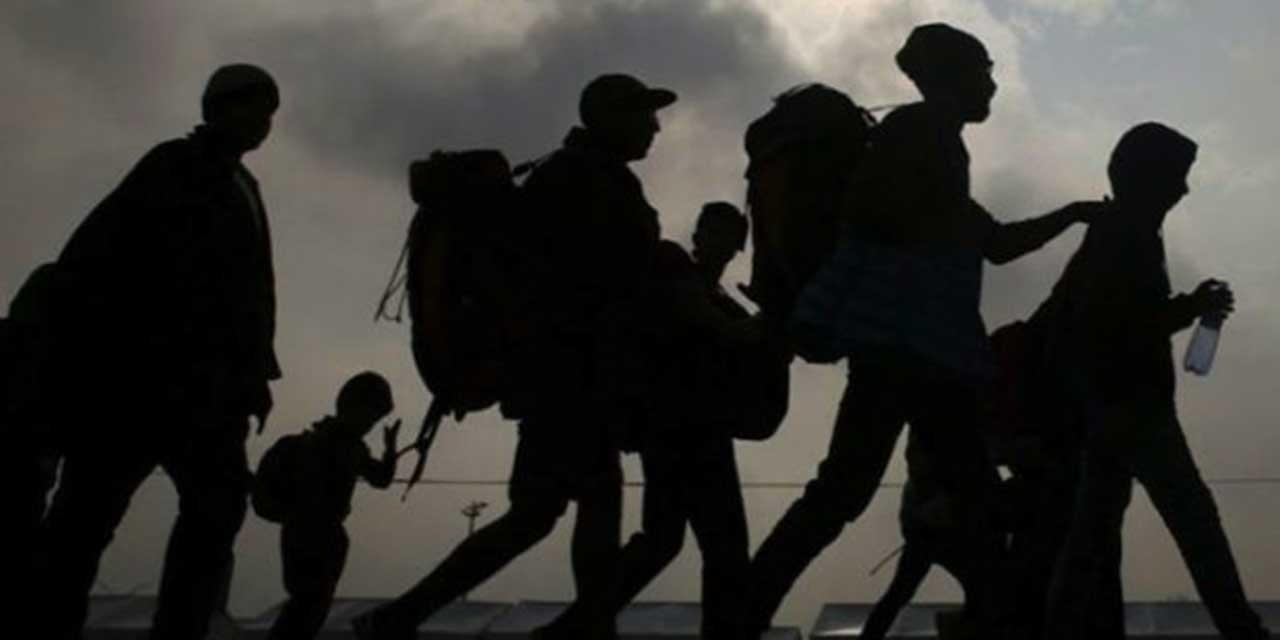Detienen a 20 migrantes en Oaxaca en promedio al día   El Imparcial de Oaxaca