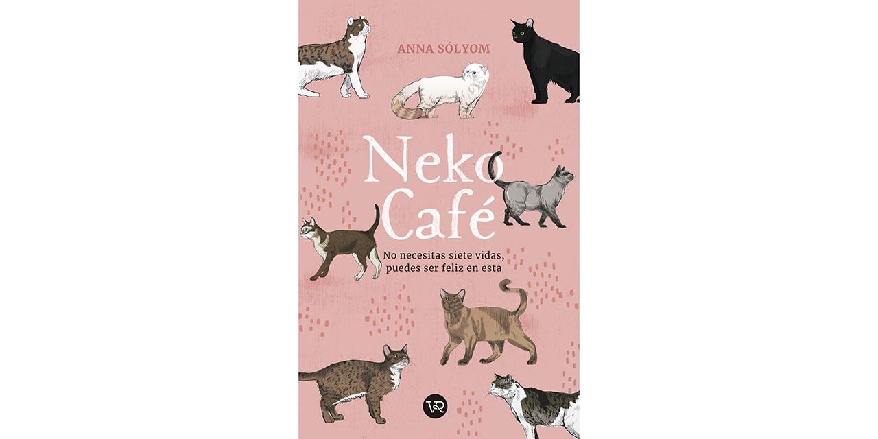 Un libro sobre gatos y café | El Imparcial de Oaxaca