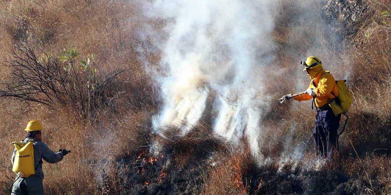 Aumenta 34% daños por incendios en la entidad   El Imparcial de Oaxaca