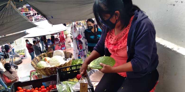 Aumenta el consumo de nopal en Huautla | El Imparcial de Oaxaca