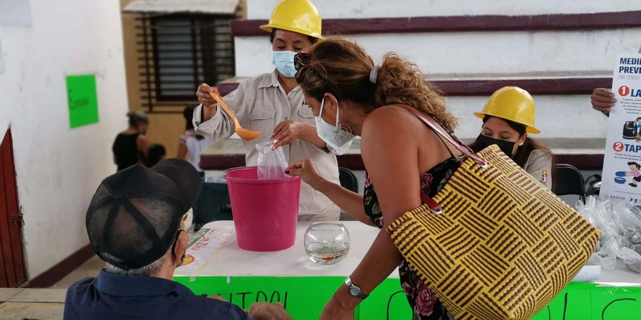 Pochutla realiza feria de salud | El Imparcial de Oaxaca