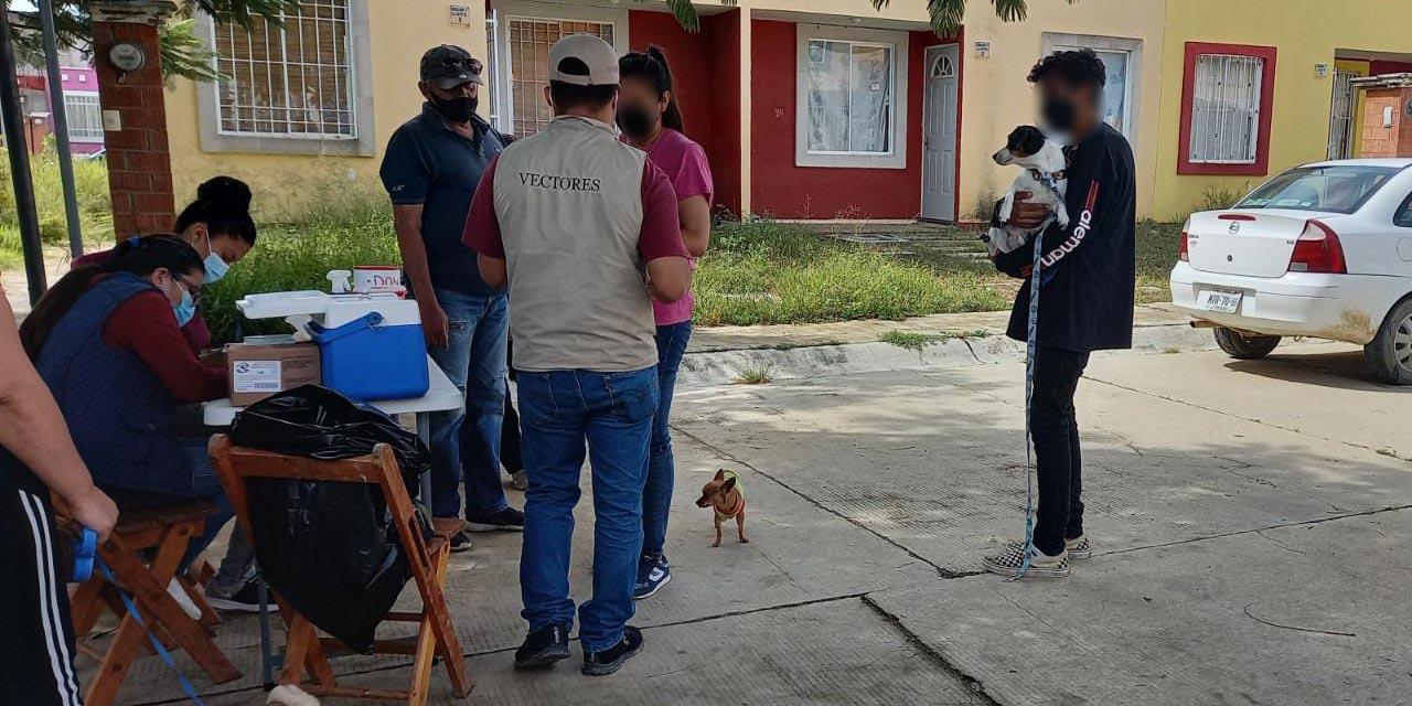 Se lleva a cabo Jornada de Vacunación Antirrábica canina y felina en Oaxaca