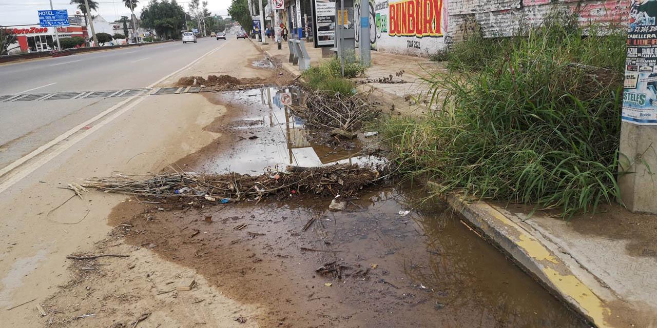 Con carril en malas condiciones anuncian inicio de operaciones del Citybus | El Imparcial de Oaxaca