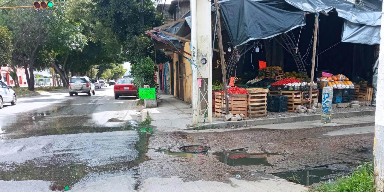 Pestilentes aguas negras en colonias de la capital, cada vez más frecuentes   El Imparcial de Oaxaca