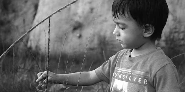 Los bebés expuestos a la violencia doméstica tienen un desarrollo cognitivo inferior a la media | El Imparcial de Oaxaca