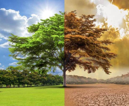 ONU advierte que ante posible aumento en temperatura, el mundo va con rumbo catastrófico