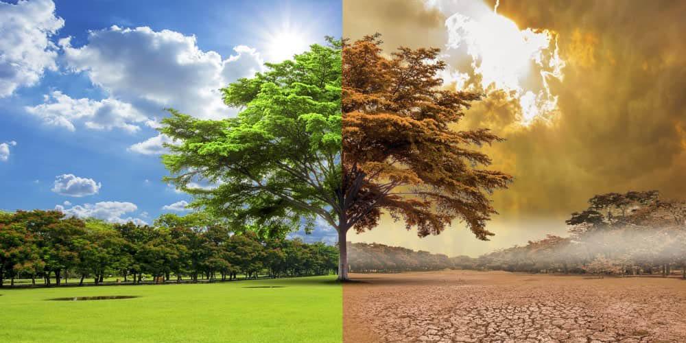 ONU advierte que ante posible aumento en temperatura, el mundo va con rumbo catastrófico   El Imparcial de Oaxaca