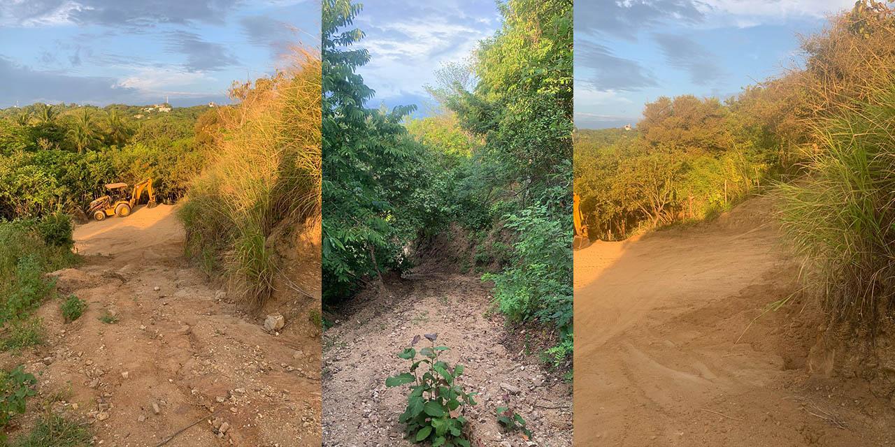 Depredación de empresarios en zona de reserva frente a Playa del Amor, Zipolite | El Imparcial de Oaxaca