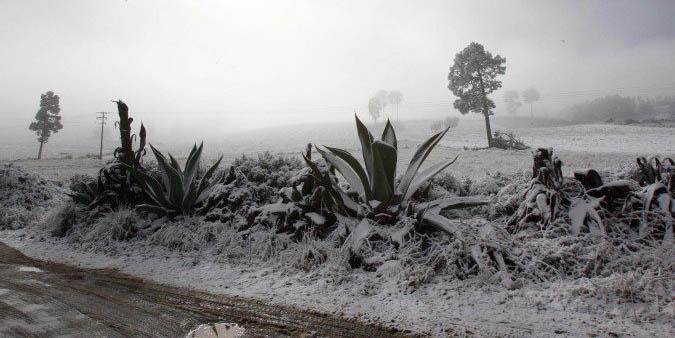 Descarta Conagua un crudo invierno; solo Temporada de 56 Frentes Fríos   El Imparcial de Oaxaca