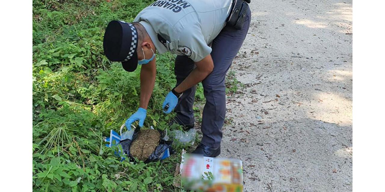 Transportaba mariguana en caja de cereal en Huatulco | El Imparcial de Oaxaca