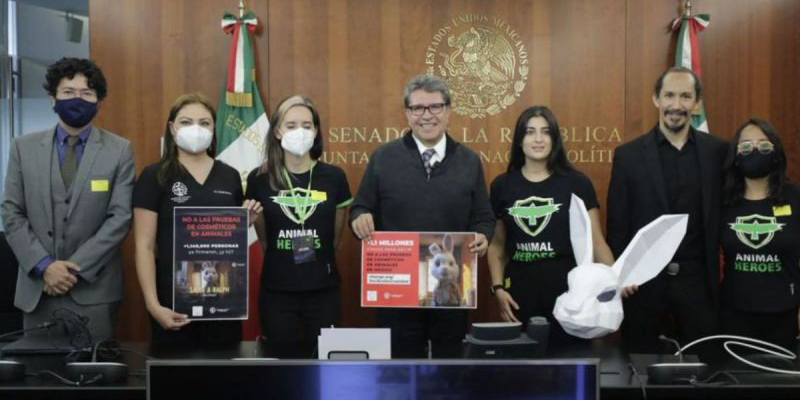 Prevé Monreal que se apruebe el proyecto que prohíba uso de animales en cosméticos | El Imparcial de Oaxaca