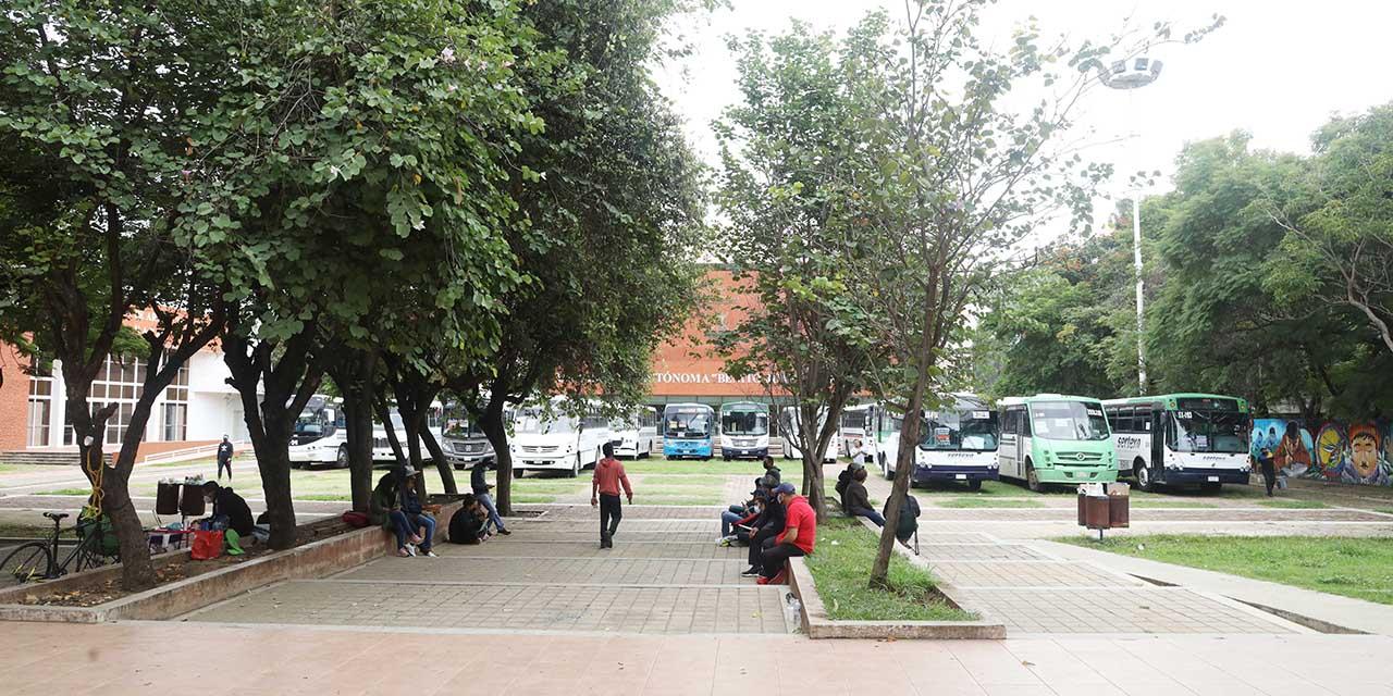 SECUABJO mantiene 15 autobuses retenidos en CU | El Imparcial de Oaxaca