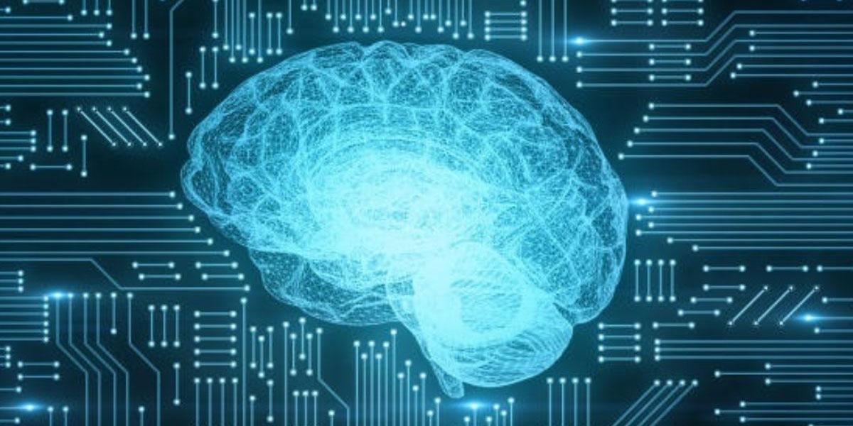 Casa Blanca quiere que se implementen protecciones ante la inteligencia artificial | El Imparcial de Oaxaca