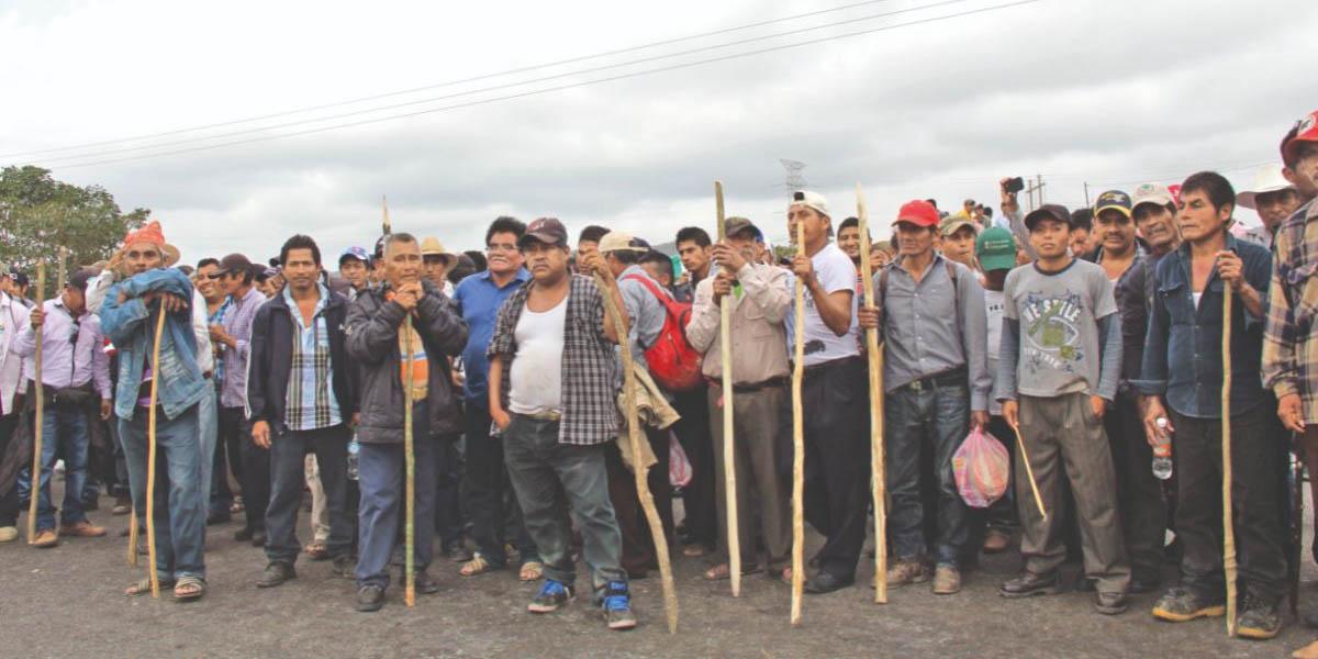 Destino de Chimalapas depende de la SCJN: activista | El Imparcial de Oaxaca